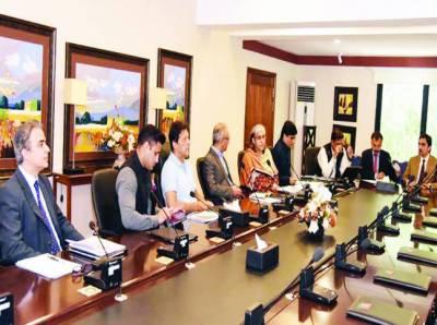 قومی اقتصادی کونسل اور ایکنک کی تشکیل نو، وزیراعظم سربراہ ہوں گے
