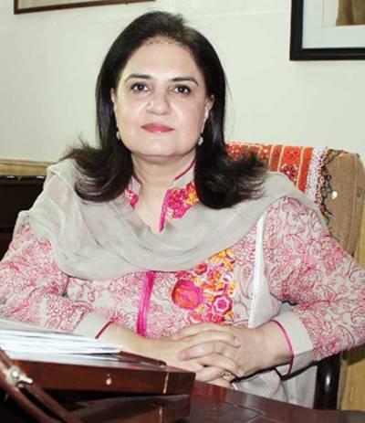 پی پی سینیٹر روبینہ خالد کے خلاف فرد جرم کی کارروائی 2 اگست تک مؤخر