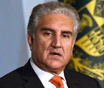وزیر خارجہ امارات سے جلد ملاقات کرکے حقائق بتائونگا، توقع ہے مایوسی نہیں ہوگی: شاہ محمود
