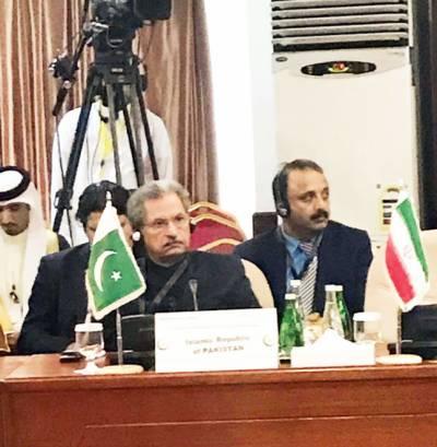 او آئی سیء وزراء خارجہ اجلاس: اسرائیلی وزیر اعظم کا اعلان صورتحال پیچیدہ، خطہ غیر مستحکم کردیگا: شفقت محمود