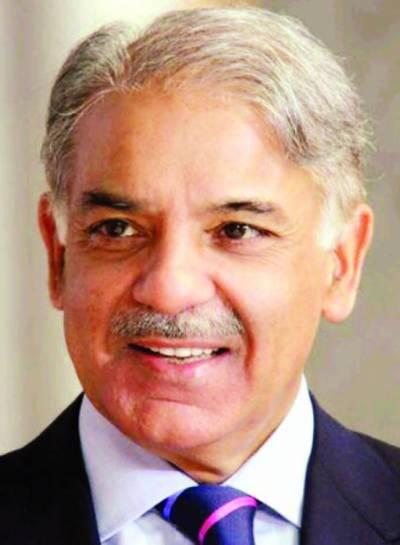 شہزادہ ولیم، شہزادی کیٹ میڈلٹن کی آمد سے پاکستان برطانیہ تعلقات کو مزید تقویت ملے گی: شہباز شریف