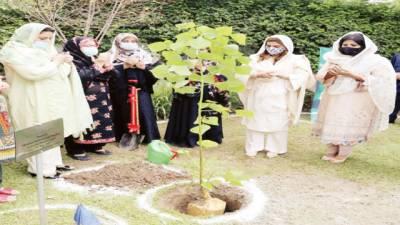 ''پلانٹ فار پاکستان ڈے'' بیگم عثمان بزدار نے اپوا کالج میں پودا لگایا